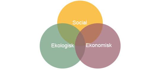 Ekologiskt hallbar design
