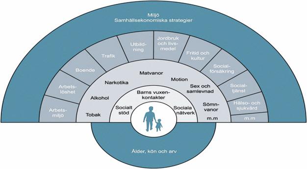 vilka faktorer påverkar vår hälsa